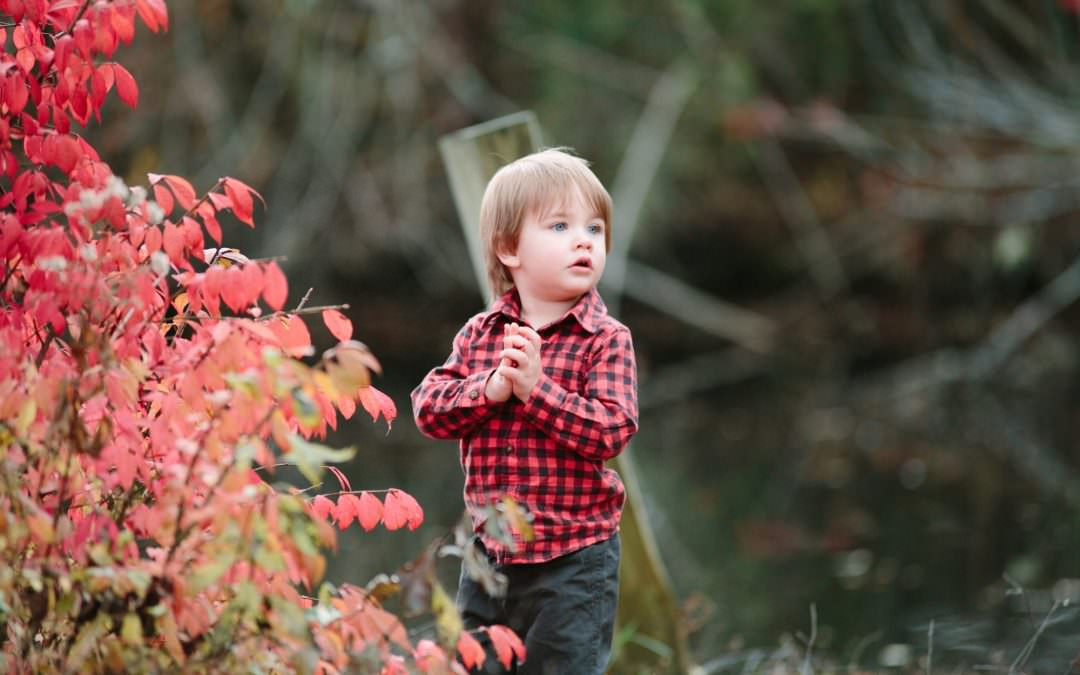 Declan Holiday Session | Kirby's Mill | Medford, NJ