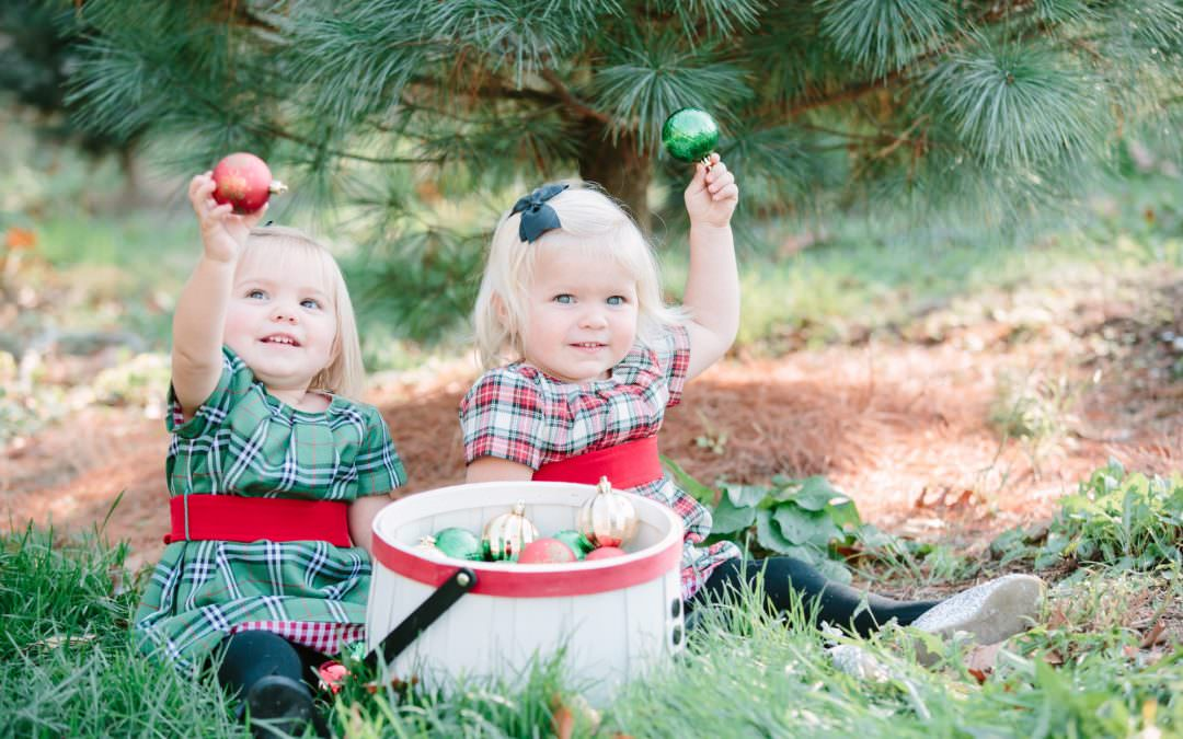 Christmas Tree Farm Mini Sessions | East Bridgewater, MA